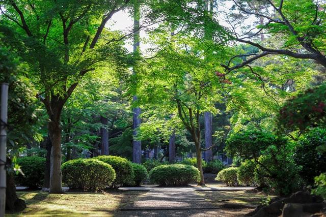 Kies voor exclusieve buitenverblijven voor in de tuin